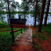 Il generatore di calore: la stufa per la sauna